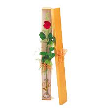 ince  kutuda  1  gül   Eryaman online çiçekçi , çiçek siparişi