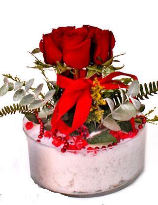 Eryaman ankara  çiçek siparişi sitesi  SEVMEK GÜZEL DIYENLERE 7 ADET GÜL