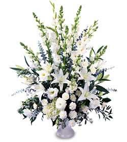 Ankara Eryaman çiçek mağazası , çiçekçi adresleri  saf temiz sevginin gücü çiçek modeli