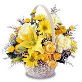 sadece sari çiçek sepeti   Ankara Eryaman yurtiçi ve yurtdışı çiçek siparişi