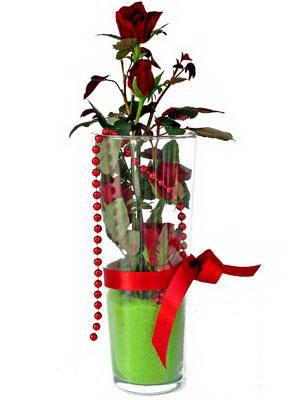 Ankara Eryaman çiçek mağazası , çiçekçi adresleri  Cam yada mika içerisinde 9 adet kirmizi gül - sevdiklerinize özel