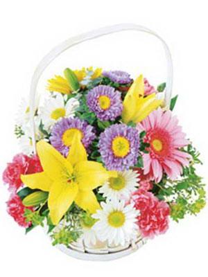 Eryaman Ankara çiçekçi online çiçek gönderme sipariş  Mevsim sepeti karisik mevsim çiçekleri