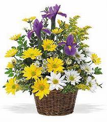 Eryaman ankara  çiçek siparişi sitesi  çiçek klasik kir sepeti sevenlere