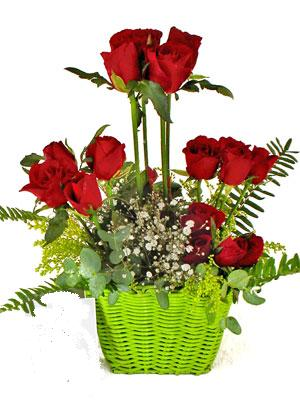 Eryaman çiçek satışı anneler günü çiçek yolla  Çiçek siparisi 9 adet kirmizi gül