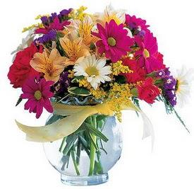Eryaman çiçekçi  çiçek , çiçekçi , çiçekçilik  cam yada mika içerisinde karisik mevsim çiçekleri