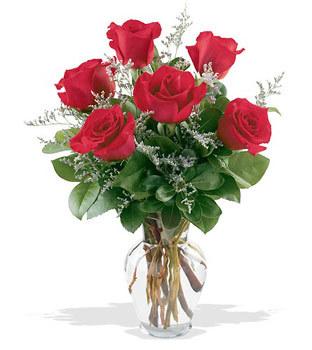 Eryaman çiçek satışı anneler günü çiçek yolla  cam yada mika vazoda 6 adet kirmizi gül