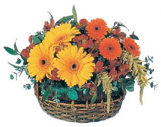 Ankara Eryaman yurtiçi ve yurtdışı çiçek siparişi  sepet içerisinde kir çiçekleri tanzimi