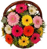 Sepet içerisinde sicak sevgi çiçekleri  Eryaman çiçek gönderme online çiçekçi