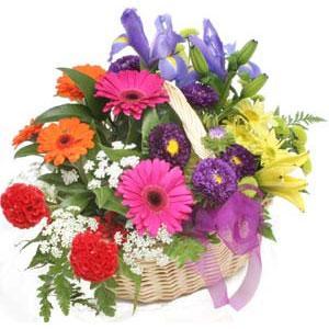 Karisik mevsim çiçekleri sepeti  Eryaman Ankara ucuz çiçek gönder