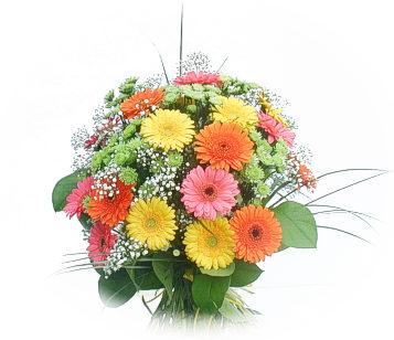 13 adet gerbera çiçegi buketi  Ankara Eryaman çiçek mağazası , çiçekçi adresleri