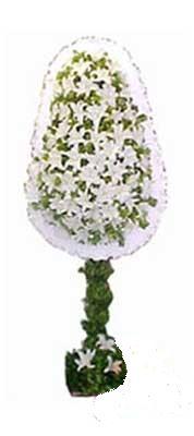 Eryaman çiçekçi telefonları eryaman çiçek  nikah , dügün , açilis çiçek modeli  Ankara Eryaman çiçek mağazası , çiçekçi adresleri