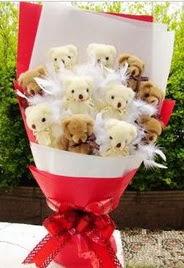 11 adet ayi buketi en güzel hediye  Ankara Eryaman hediye sevgilime hediye çiçek
