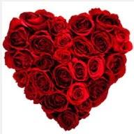 Ankara Eryaman hediye sevgilime hediye çiçek  19 adet kırmızı gülden kalp tanzimi