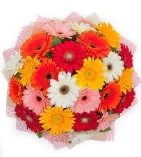 15 adet renkli gerbera buketi  Çiçekçi Eryaman cicekciler , cicek siparisi