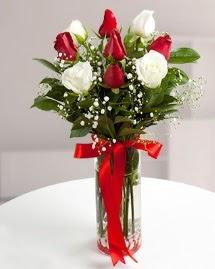 5 kırmızı 4 beyaz gül vazoda  Eryaman çiçek satışı anneler günü çiçek yolla