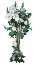 Eryaman çiçekçi ankaraya çiçek yolla çiçekçiler  antoryumlarin büyüsü özel