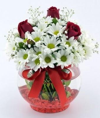 Fanusta 3 Gül ve Papatya  Eryaman çiçekçi  çiçek , çiçekçi , çiçekçilik