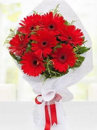 Kırmızı Gelbera Buketi  Eryaman Ankara ucuz çiçek gönder