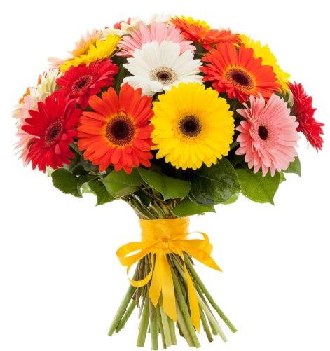 Gerbera demeti buketi  Eryaman çiçek gönderme sitemiz güvenlidir