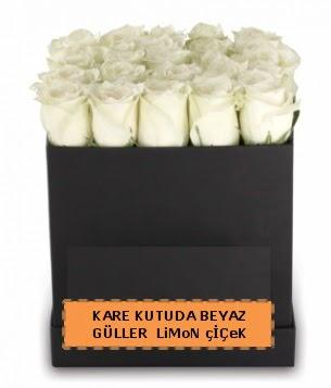 Kare kutuda 17 adet beyaz gül tanzimi  Eryaman çiçekçi telefonları eryaman çiçek