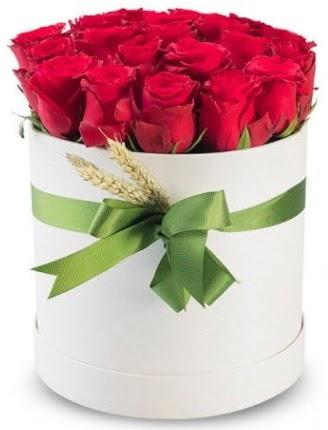 Özel kutuda 25 adet kırmızı gül çiçeği  Eryaman çiçek gönderme sitemiz güvenlidir